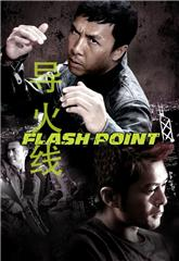 Flash Point (2007) 1080p Poster