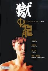 Dragon in Jail (1990) Poster