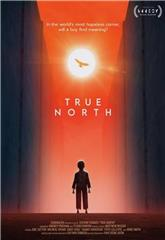 True North (2020) 1080p Poster