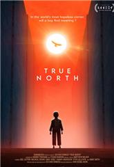 True North (2020) 1080p web Poster