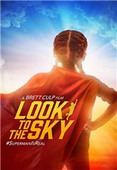 Look to the Sky (2017) 1080p Poster
