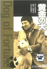 Dog of Fortune (1979) Poster