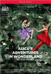 Alice's Adventures in Wonderland (2011) 1080p Poster