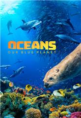Oceans: Our Blue Planet (2012) 1080p Poster