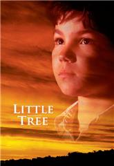 The Education of Little Tree (1997) 1080p Poster