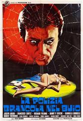 The Police Are Blundering in the Dark (1975) Poster