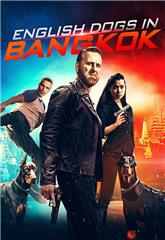 English Dogs in Bangkok (2020) Poster