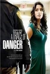 A Trace of Danger (2010) 1080p Poster