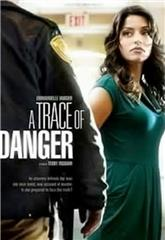 A Trace of Danger (2010) Poster