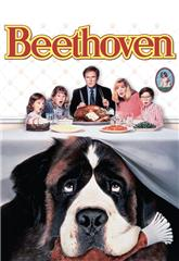 Beethoven (1992) bluray Poster