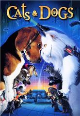 Cats & Dogs (2001) bluray Poster