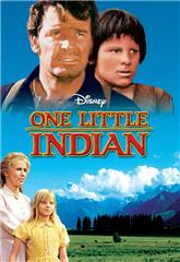 One Little Indian (1973) web Poster