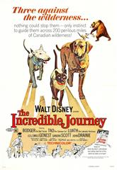 The Incredible Journey (1963) web Poster