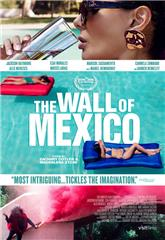 The Wall of Mexico (2019) Poster