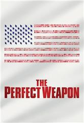 The Perfect Weapon (2020) 1080p web Poster