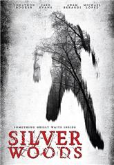 Silver Woods (2017) Poster
