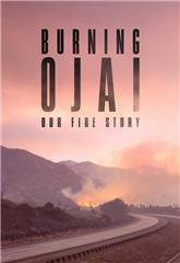 Burning Ojai: Our Fire Story (2020) 1080p Poster