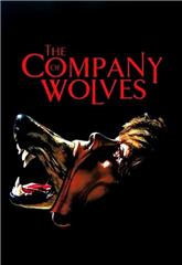The Company of Wolves (1984) bluray poster