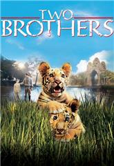 Two Brothers (2004) bluray Poster