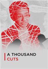 A Thousand Cuts (2020) Poster