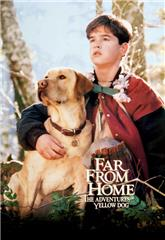 Far from Home: The Adventures of Yellow Dog (1995) web Poster