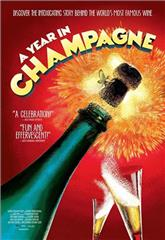 A Year in Champagne (2014) 1080p web Poster
