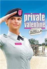 Private Valentine: Blonde & Dangerous (2008) bluray Poster