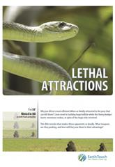 Lethal Attractions (2014) Poster