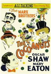 The Cocoanuts (1929) 1080p bluray Poster
