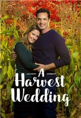 A Harvest Wedding (2017) 1080p web Poster