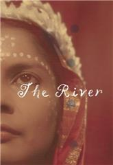 The River (1951) bluray poster