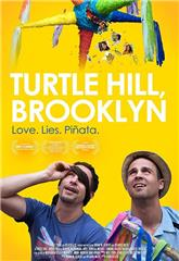 Turtle Hill, Brooklyn (2013) poster