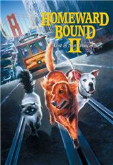 Homeward Bound II: Lost in San Francisco (1996) 1080p Poster