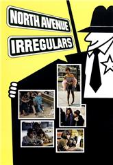 The North Avenue Irregulars (1979) 1080p web Poster