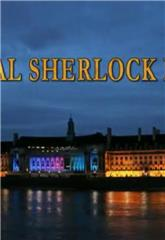 The Real Sherlock Holmes (2012) Poster