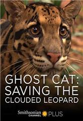 Ghost Cat: Saving the Clouded Leopard (2021) 1080p Poster