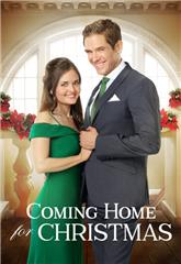 Coming Home for Christmas (2017) Poster