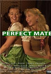 Perfect Mate (2020) Poster