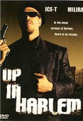 Up in Harlem (2004) 1080p web Poster