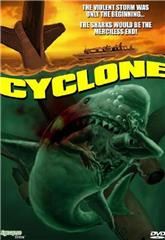 Cyclone (1978) poster