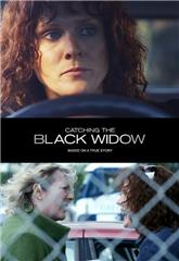 Catching the Black Widow (2017) poster