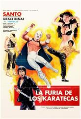 The Fury of the Karate Experts (1982) poster
