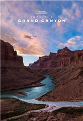 Into the Canyon (2019) Poster