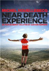Near Death Experience (2014) Poster