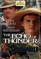 The Echo of Thunder (1998) 1080p web poster