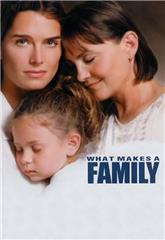 What Makes a Family (2001) poster