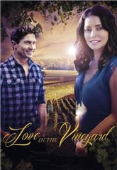 Love in the Vineyard (2016) bluray Poster