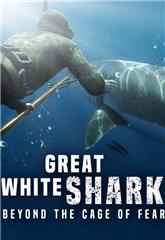 Great White Shark: Beyond the Cage of Fear (2013) 1080p web Poster