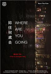 Where Are You Going (2016) 1080p Poster